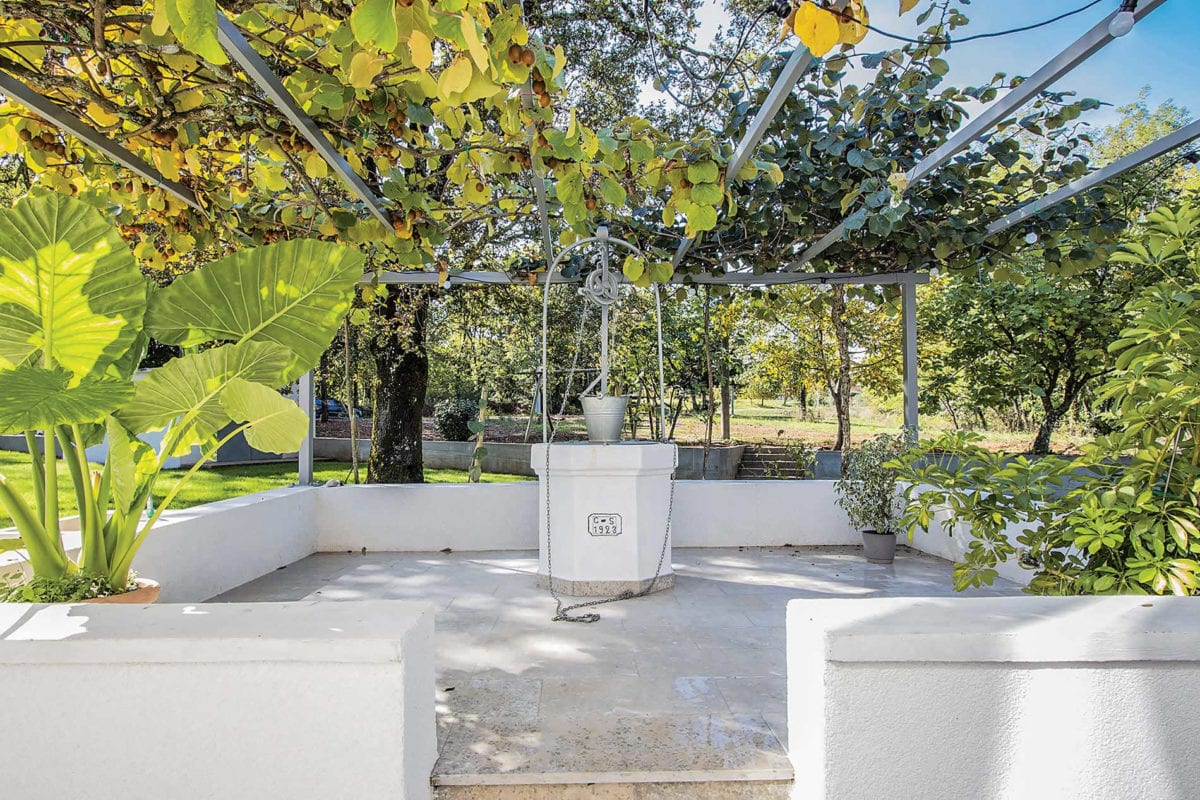 There are plenty of quiet, shaded areas around the house, such as the 100 year old water cistern with its kiwi pergola